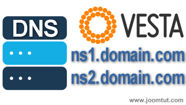 How to setup private domain name servers in VestaCP